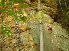 Rock Climbing Photo: Fall colors approaching.