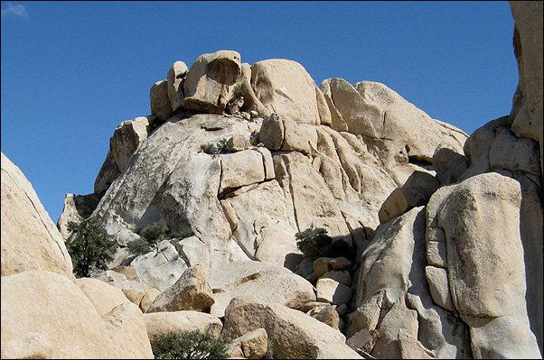 Rock Climbing Photo: Fat Freddie's Cat. Photo By Blitzo.