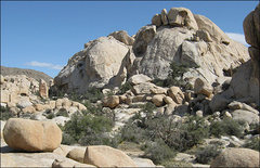 Rock Climbing Photo: Red Obelisk, Pea Brain and Fat Freddie's Cat. Phot...