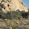 Suprise Rock.<br> Photo by Blitzo.