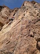 Rock Climbing Photo: Season Down Under.