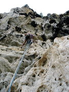 Rock Climbing Photo: Ty Hydrusko working on the 4th pitch of the Mantis...