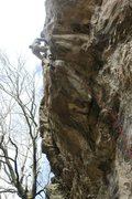Rock Climbing Photo: Crux moves done, only vertical vice to the anchors...