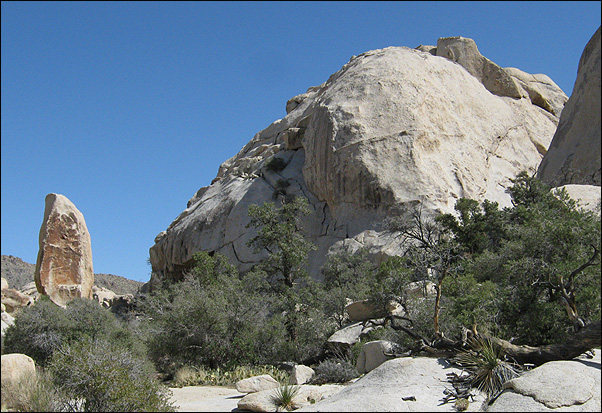 Rock Climbing Photo: Red Obelisk and Pea Brain. Photo by Blitzo.