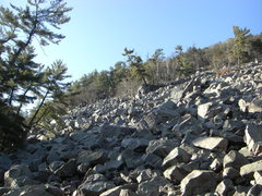 Rock Climbing Photo: Base of the talus looking northwest.  Block Party ...