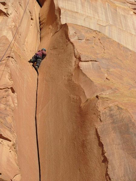 Rock Climbing Photo: Sydney Hartsock top roping Capitol Gorgeous.