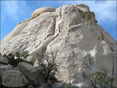 Rock Climbing Photo: Fat Freddie's Cat NE. Photo by Blitzo.