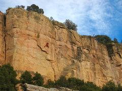 Rock Climbing Photo: Crimping through the crux.
