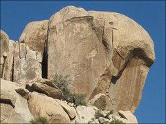 Rock Climbing Photo: Steep stuff. Photo by Blitzo.