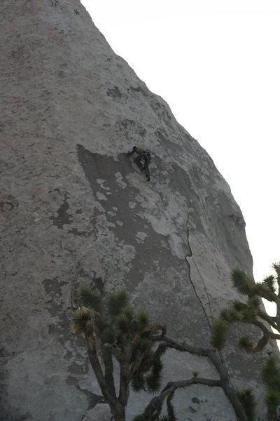 Rock Climbing Photo: Eric on Lickety Splits.