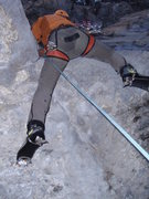 "Rock Climbing Photo: Classic ""Bear Ass shot"".  Griz pulling t..."