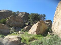 Rock Climbing Photo: Albert wandering.