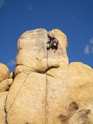 Rock Climbing Photo: Tony climbing first ascent on west side of Baskerv...