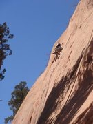 Rock Climbing Photo: 23MAR11 Red Rock Canyon Open Space Celena leads