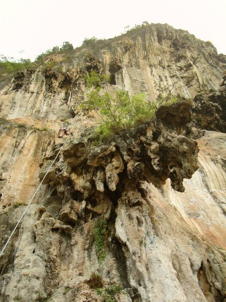 Rock Climbing Photo: 2009 Trip to Thailand, Ko Phi Phi & Railay 1st Eve...