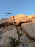 Rock Climbing Photo: The Riddler (5.12a), Joshua Tree NP