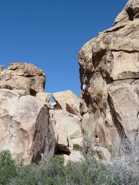 Climbers on Eileen Dover (5.10b), Joshua Tree NP