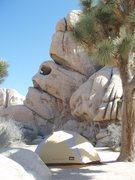 Rock Climbing Photo: Hidden Valley home away from home
