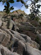 Rock Climbing Photo: This was where we first roped up.  As you can see,...