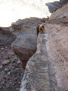 Rock Climbing Photo: High up on DOA/DEC