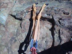 Rock Climbing Photo: My first TR setup: the quad