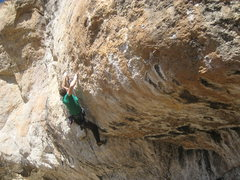Rock Climbing Photo: A hard clip before the RP crux.