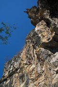 Rock Climbing Photo: Looking up the nose of the Crazy Horse