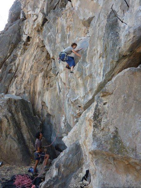 Rock Climbing Photo: Denali climbing the crack system on destiny