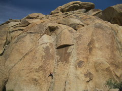Rock Climbing Photo: Unsuspecting Steph, about to climb into the jaws o...
