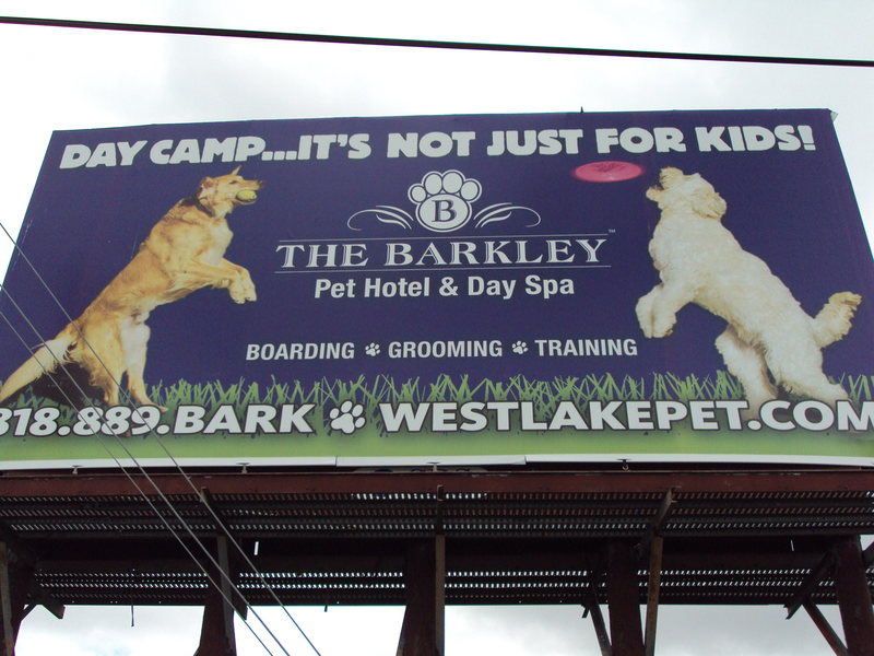 Have more fun on The Barkley.