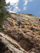Rock Climbing Photo: Paul Glover leading Arms Reduction.