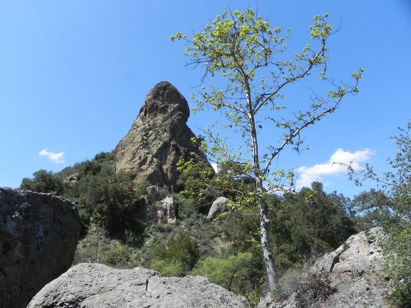 Rock Climbing Photo: Lake Malibou Tower.