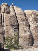 Rock Climbing Photo: Orientation of cracks on Short Wall Right Side: S....