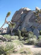 Rock Climbing Photo: North side of Cap Rock, showing False Lieback.