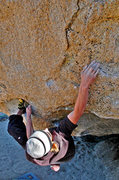 Rock Climbing Photo: Warren Walters starts the crux of 'The Beekeeper'