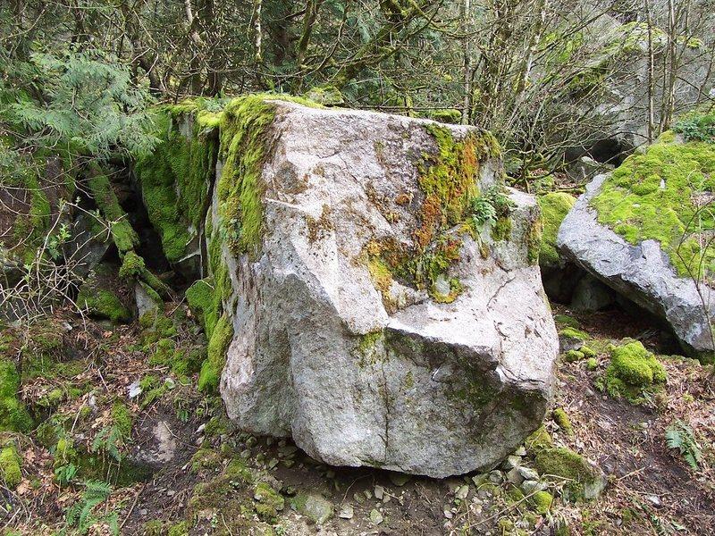 Rock Climbing Photo: Big Boss