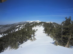 looking along the ridge - towards mt charleston