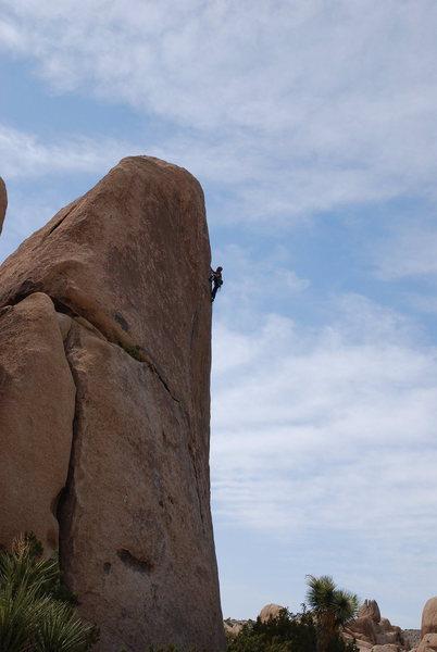 Rock Climbing Photo: Rubicon J Tree CA