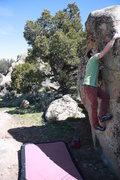Rock Climbing Photo: white belt.
