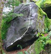 Rock Climbing Photo: Trixster