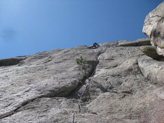 Rock Climbing Photo: Sean  up on P 1. AWESOME line!!! We used the bolts...