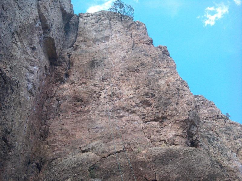 Rock Climbing Photo: Dune 5.10a~ shelf road