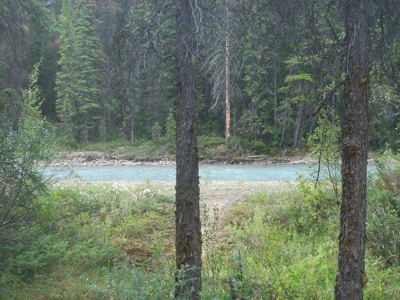 Camp, Yoho NP, British Columbia