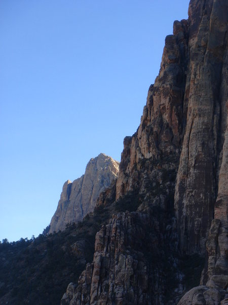 Rock Climbing Photo: Mt. Wilson from Geronimo.