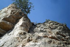 Rock Climbing Photo: Brenda at the anchors for Lamont's Period.  Anchor...