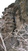 Rock Climbing Photo: giant crack climb up to the top of the canyon