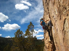 Rock Climbing Photo: Tina seconding Ripped.