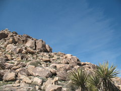 Rock Climbing Photo: Tidbit (5.10a) from the desert floor, Joshua Tree ...