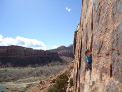Rock Climbing Photo: Indian Creek Generic Crack