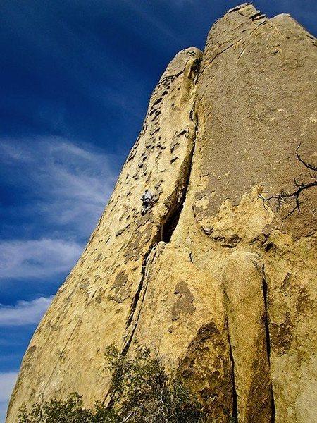 Rock Climbing Photo: Dan mid way on the cool plates